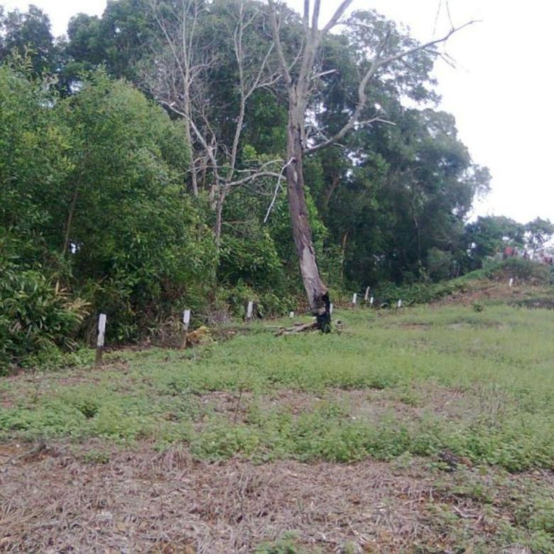 tanah agung tunggal dekat mt haryono balikpapan