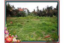 Lokasi Potensial 3.200 m2  Dekat Monkey Forest di Sentral Ubud TJUB510