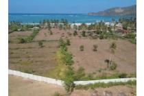 Tanah-Lombok Tengah-6