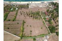 Tanah-Lombok Tengah-7
