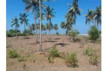 Tanah-Lombok Tengah-5