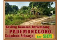 Spesial Investasi Kavling Lokasi Berkembang Sukodono Sidoarjo