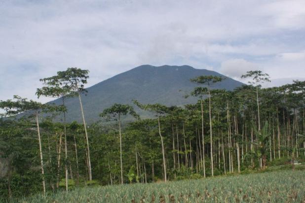 Tanah Kavling Murah di Puncak Jawa Barat Buy Back Guarantee By Developer 17795031