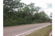 tanah poros jalan dekat kantor bupati ppu