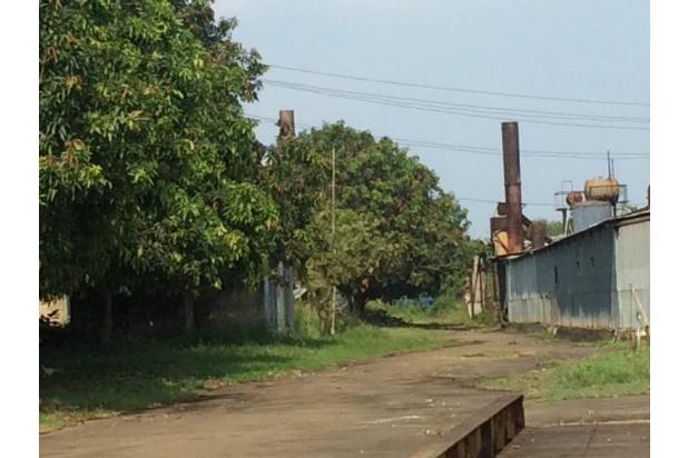 Rp98mily Pabrik Dijual