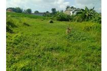 Tanah Di Jln Tumbak Bayuh Canggu Bali