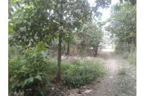 7500m2.SPPT/GIRIK Tanah di Kec.Jasinga Bogor Barat