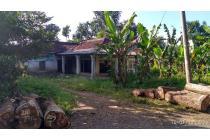 Tanah-Sukabumi Regency-3