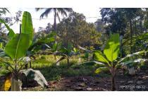 Tanah-Sukabumi Regency-6