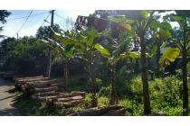 Tanah-Sukabumi Regency-7