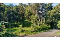 Tanah-Sukabumi Regency-9