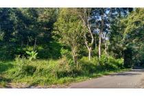 Tanah-Sukabumi Regency-10