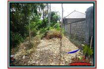 Potensial Strategis Tanah 600 m2 Sentral Ubud YUB523