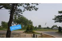 Tanah Deltamas Cikarang Hadap Jl Raya Bulevar Luas 3.600 Rp 7.5 Jt /Meter