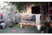 Rumah dan Ruang Usaha Bebas Banjir Jl kolonel Masturi, Cimahi