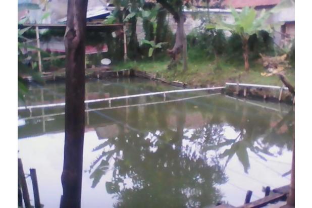 Rumah + Kolam di Cibeber Cimahi 10917772