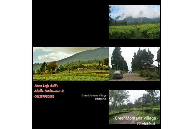 Investasi Kavling Villa Puncak Cipanas, Green Montana Village 60jutaan 16225006