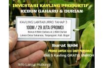 Kavling Murah 29 Juta | Kavling Buah Lantaburo Tanjungsari Bogor