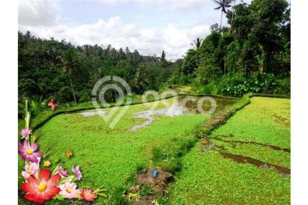 Jarang ada, 21.800 m2 View sawah,sungai,tebing di Ubud Tegalalang 3872599