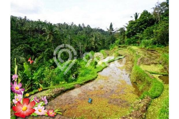 Jarang ada, 21.800 m2 View sawah,sungai,tebing di Ubud Tegalalang 3872601