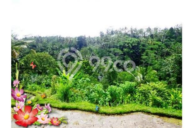 Jarang ada, 21.800 m2 View sawah,sungai,tebing di Ubud Tegalalang 3872603