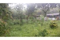 Tanah Pekarangan 202 Meter di Dekat Museum Merapi sleman