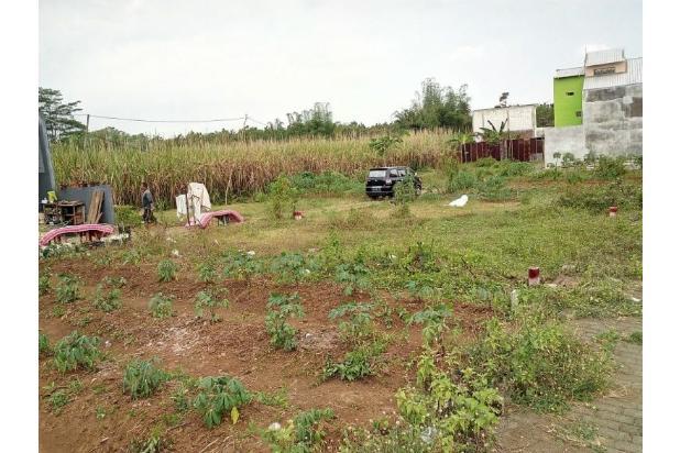 Rp115jt Tanah Dijual