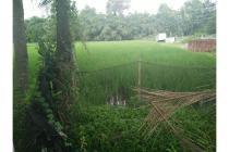 Dijual Tanah Sawah Jl.Wonosari Km 9,Tanah Dijual Murah Bantul
