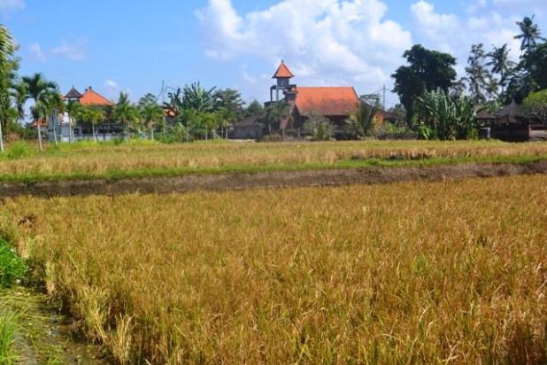 Rp17,3mily Tanah Dijual