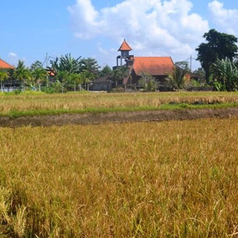 FOR SALE Exotic PROPERTY 6,300 m2 LAND IN Sentral Ubud BALI TJUB662