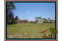 sangat Cantik Langka Tanah 500 m2 Sentral di Ubud E435