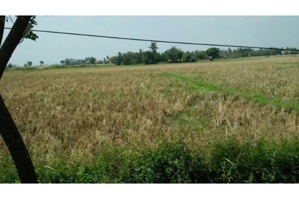 Rp8,2mily Tanah Dijual