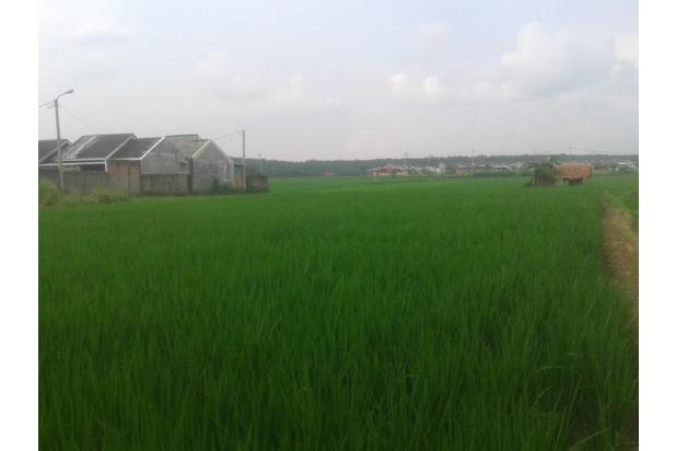 Rp15mily Tanah Dijual