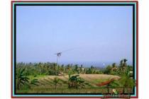 Tanah Langka Super Cantik 4.150 m2 di Tabanan selemadeg A137