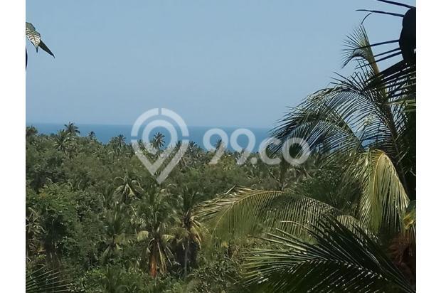 Balian Beach View 13296828