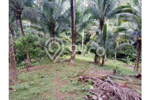 Balian Beach View 13296847