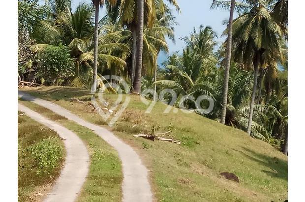 Balian Beach View 13296861
