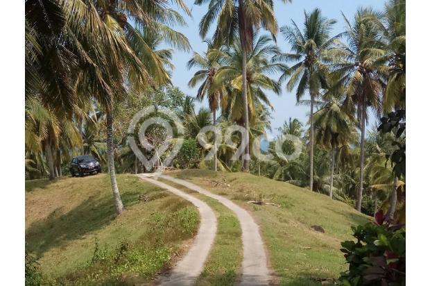 Balian Beach View 13296866