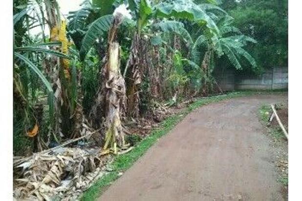 Tanah Murah Lokasi Strategis Dibelakang Cluster Kota Wisata Cibubur 8032404