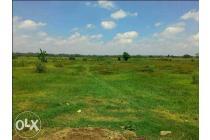 Tanah Murah Di Den Anyar