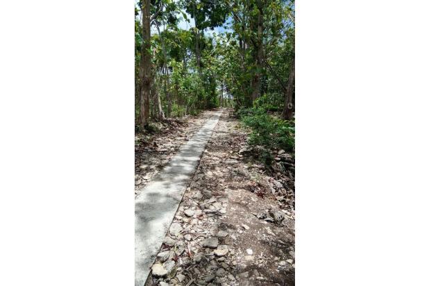 Tanah Pekarangan, Berlegalitas SHMP di Bambanglipuro,   Bantul 17824497