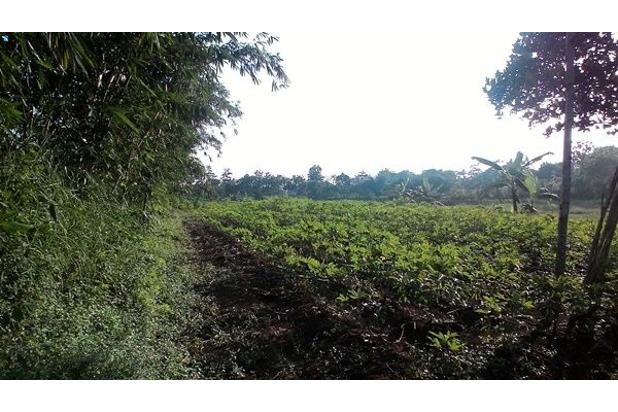 Rp52,5mily Tanah Dijual