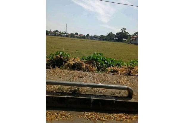 Rp44,2mily Tanah Dijual