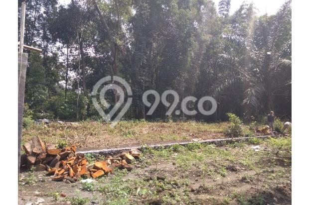 Bangun Rumah Jadi Hemat 30%, Sila KPT Bank : Taman Asoka, Sukoharjo 16844628