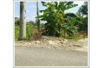 Tanah Murah Jogja Barat Cocok Bangun Rumah