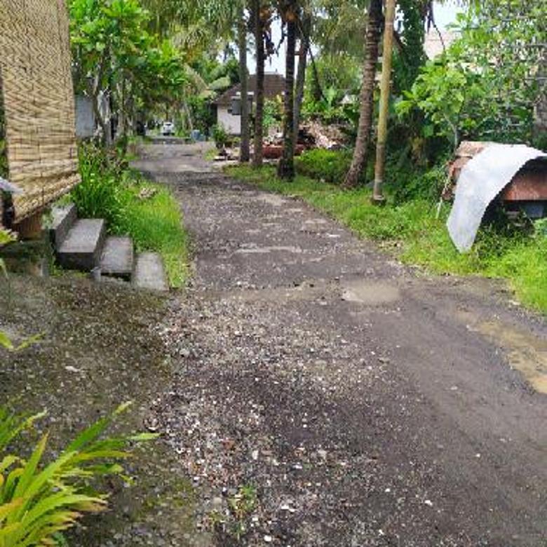 Rumah kosan murah di Central ubud