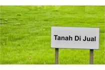 Tanah di Jual - Slawi, Kabupaten Tegal