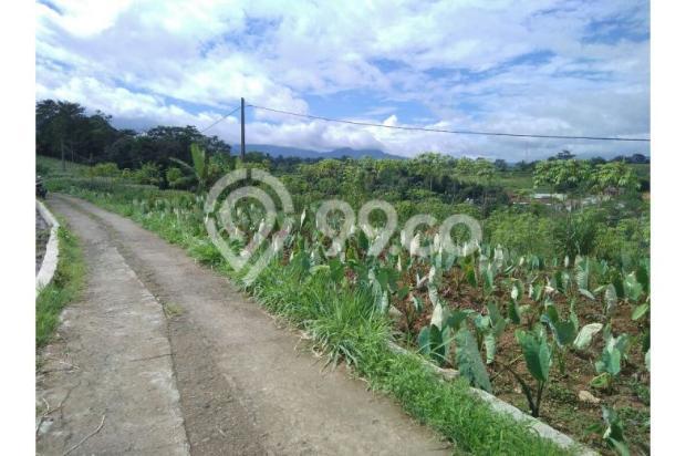 Tanah bogor lokasi strategis view bagus di tapos tenjolaya 9586462