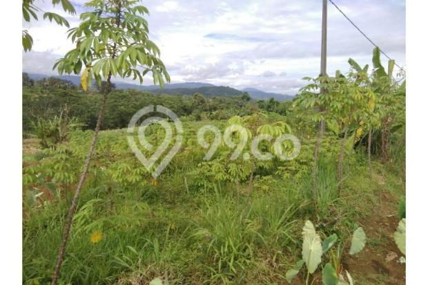 Tanah bogor lokasi strategis view bagus di tapos tenjolaya 9586461