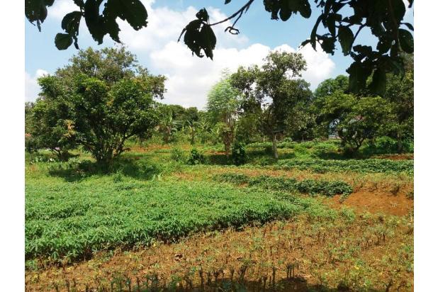 Rp4,7mily Tanah Dijual